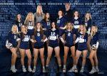 Volleyball beats Chardon; Advances in OHSAA Tournament