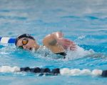 Girls' Swimming and Diving Defeats Walsh Jesuit