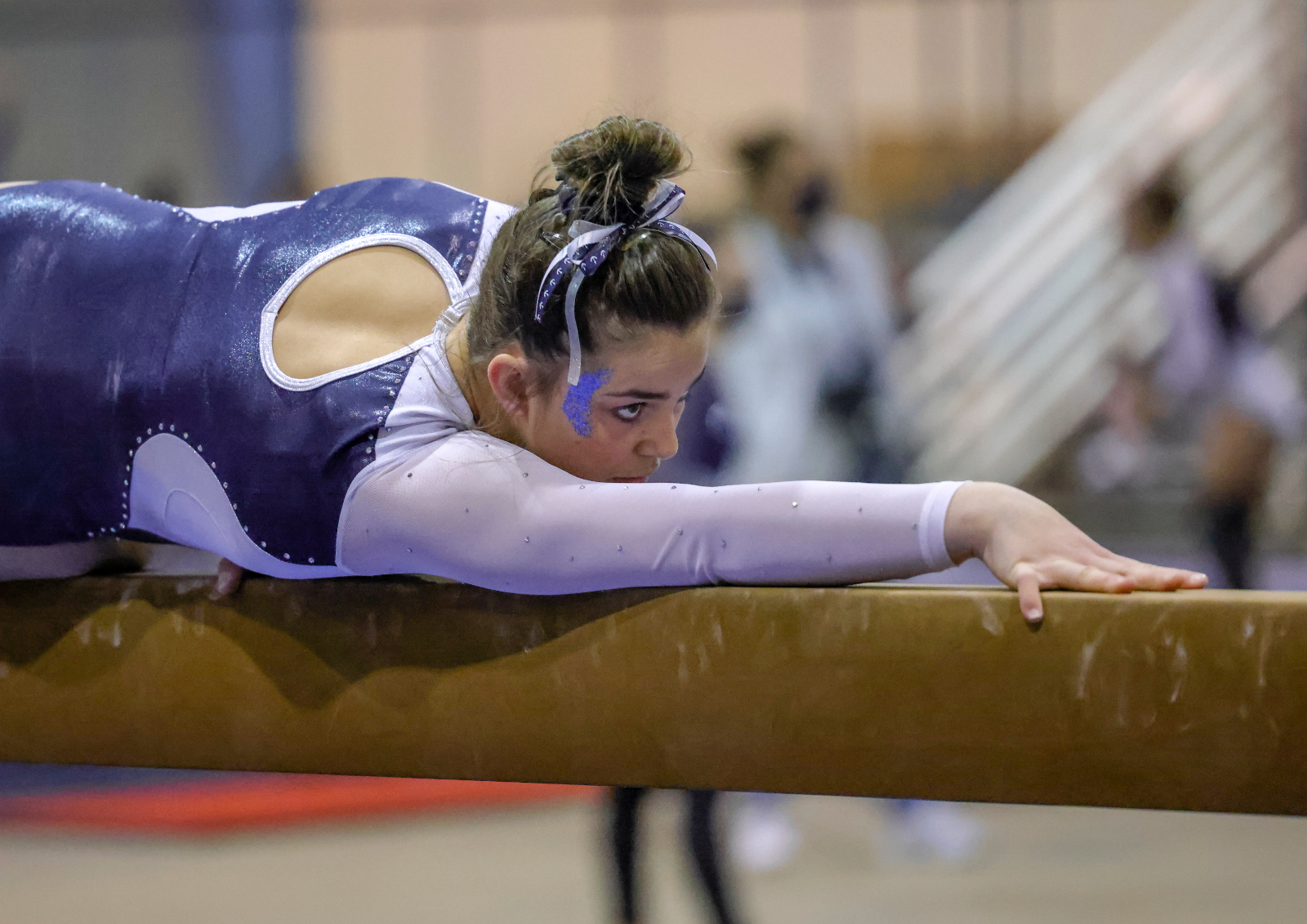 Images From Hudson Gymnastics Sectional Tournament