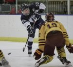 Images From Hockey vs Walsh Jesuit - Playoffs