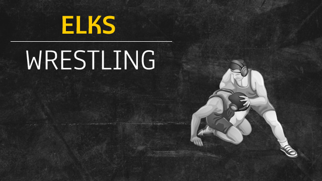 Wrestling Continues Record Setting Year, Advances All 14 Wrestlers To Districts
