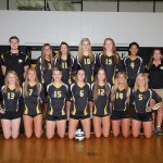 Girls' Volleyball Downs Vikings in Four Sets