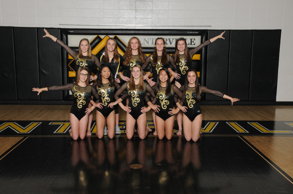 Gymnastics Places 5th at Dayton Championships