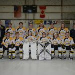 Hockey Wraps Up Season in District Tournament