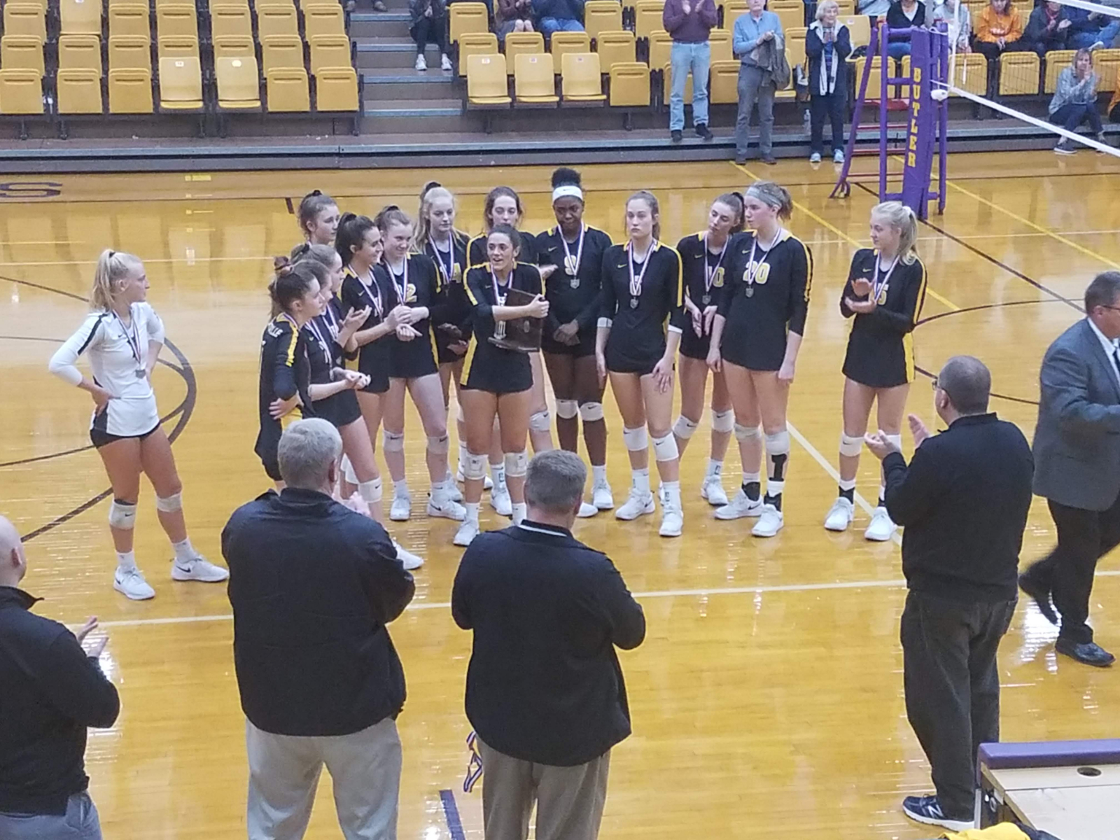 Wolves Overwhelm Elks in District Volleyball Finals
