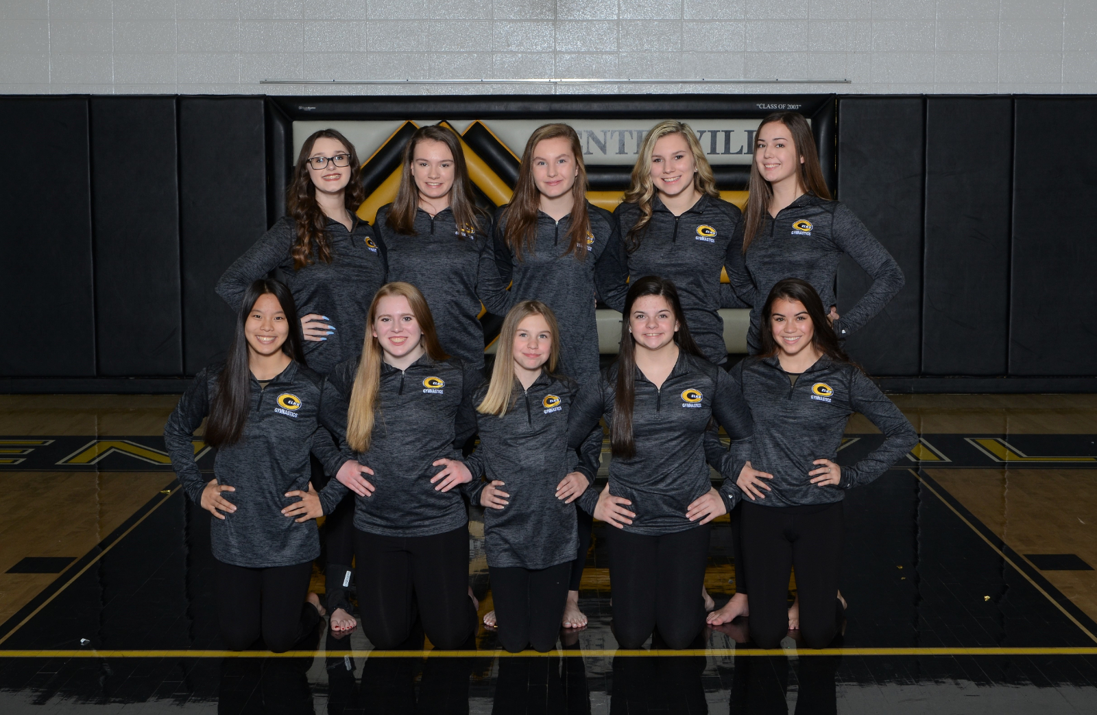 Gymnasts Finish Fifth at Troy Invite