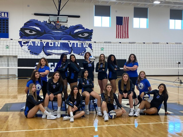 Canyon View Girls Volleyball