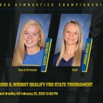 Wooster Gymnasts Headed to State Tournament