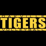 Oakville Volleyball on a Roll