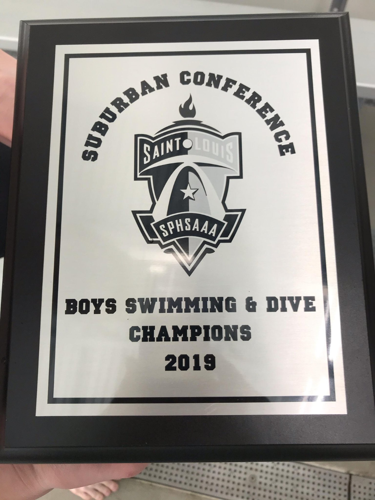Boys Swim Conference Champs & State Bound