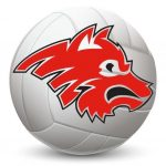 Wolves volleyball loses 3-0 to St. Cloud Cathedral