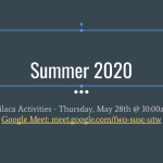 Milaca Activities 2020 meeting update