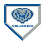 Hamilton Southeastern Baseball to Host Community Night on Thursday!