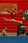 Gymnasts are Undefeated Section Champions and Begin Post-Season Tonight!