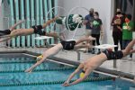 Swimmers Ready for OHSAA Sectional Tournament This Weekend