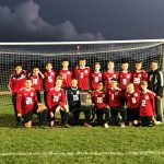 Boys Soccer – IHSA Sectional Information