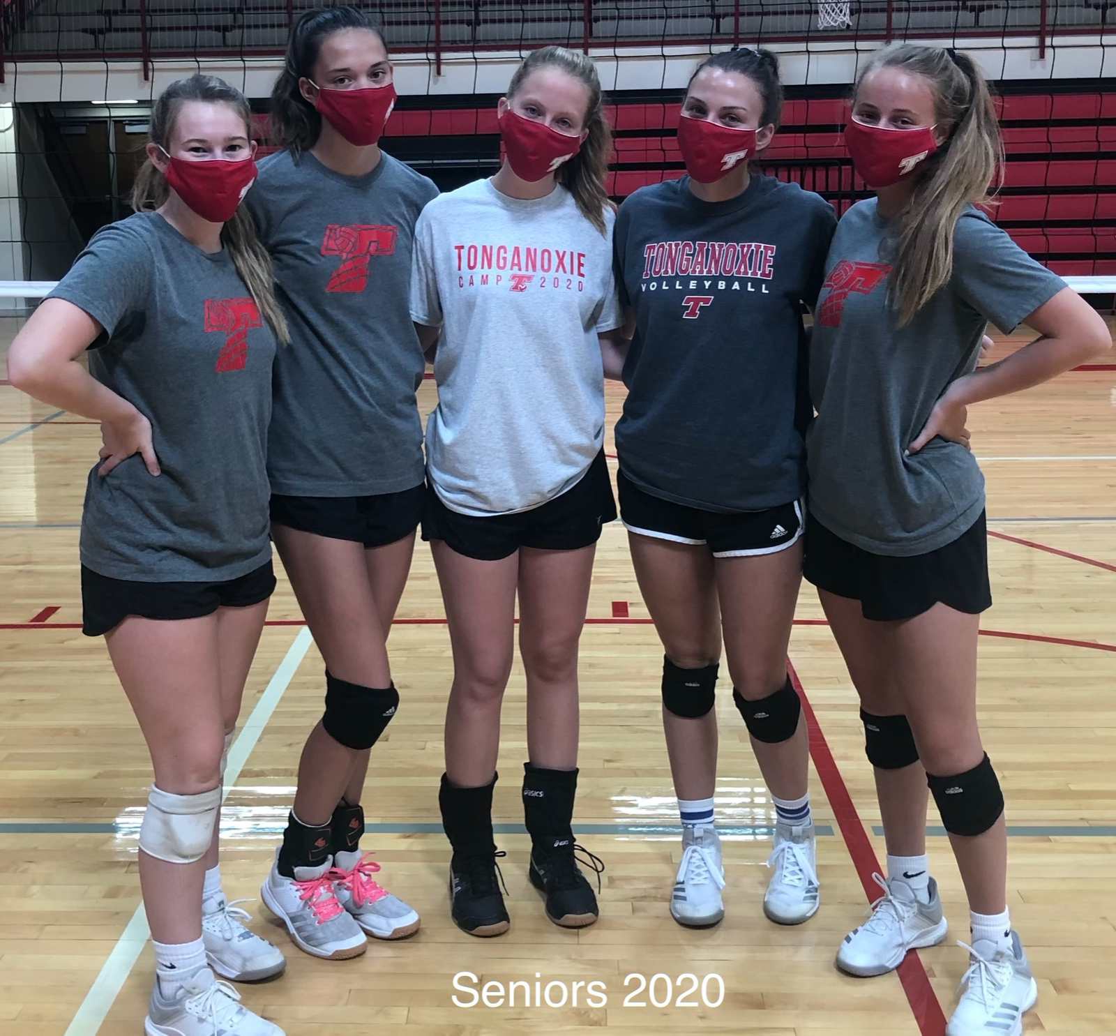 Introducing your 2020 THS Volleyball Team Members