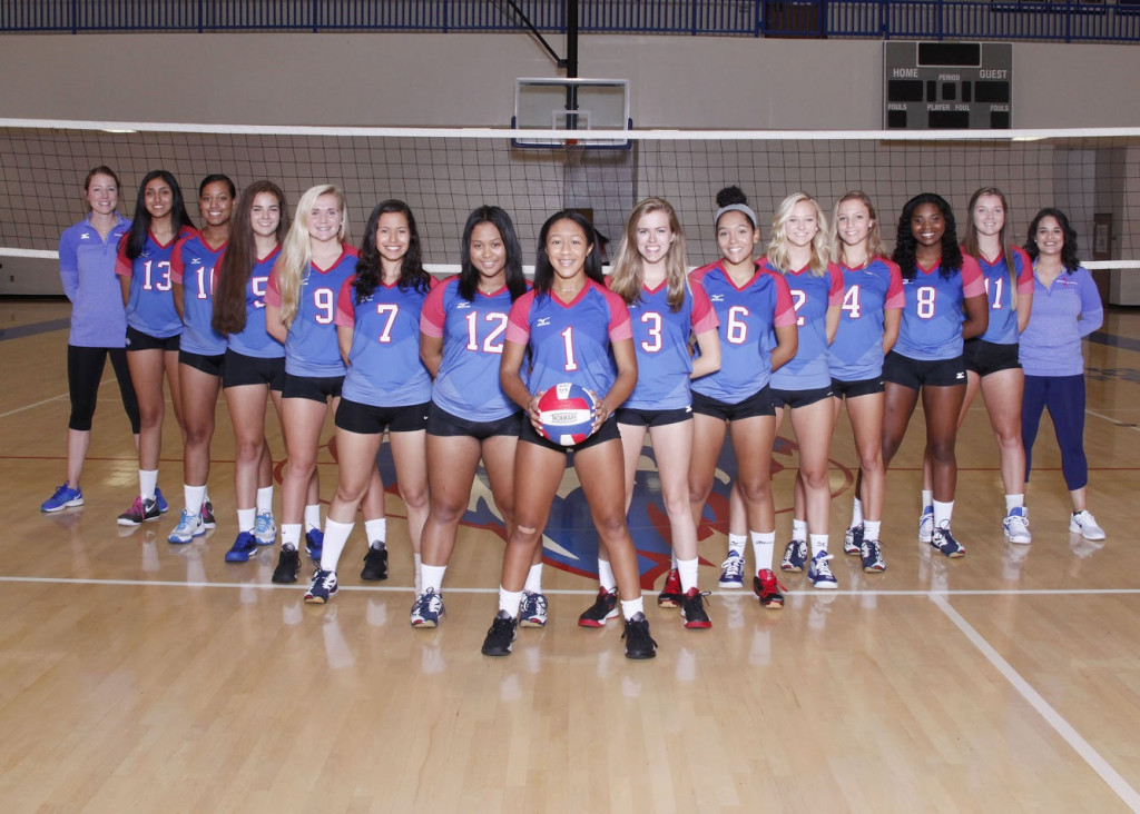 Lions Volleyball ousted in first round of state tournament