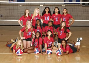 2018 JV Volleyball Gallery