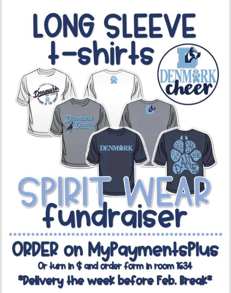 DHS Cheer Long Sleeve Shirt Fundraiser