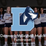 Volleyball Fundraiser