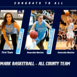 Lady Danes – All County Team