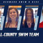 Swim Danes Honored