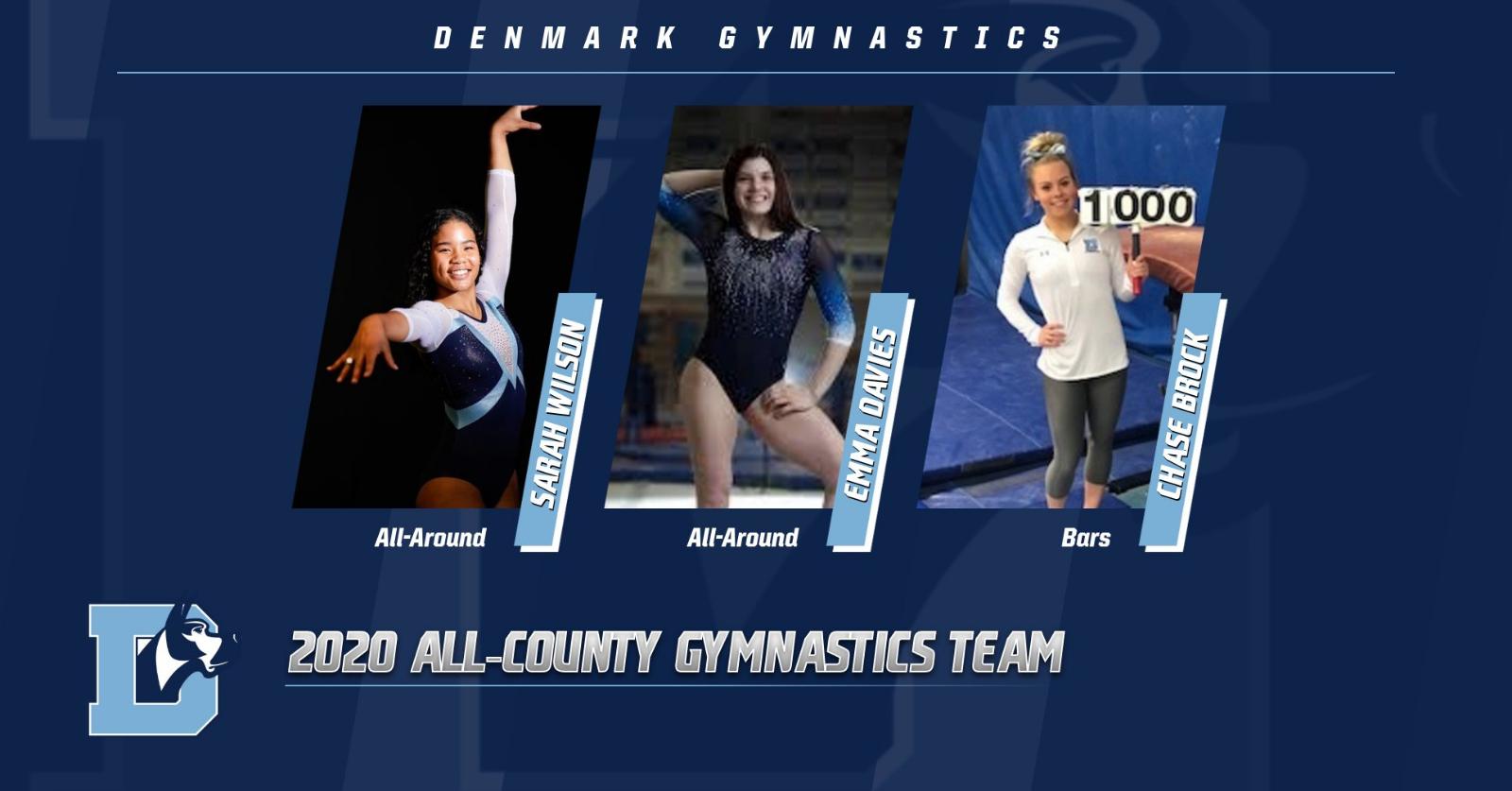 All-County Gymnastics Team