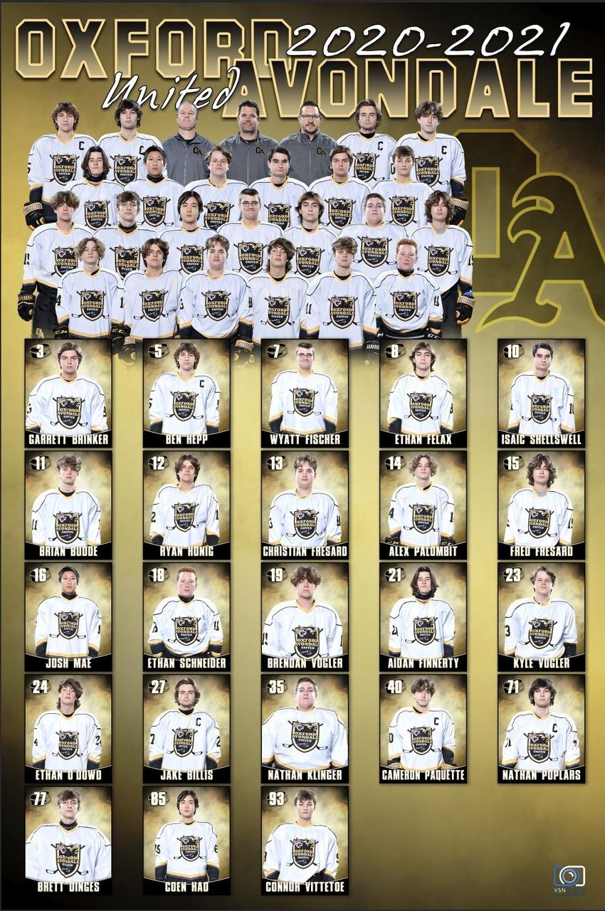 Ice Hockey Team 2021