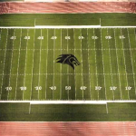 New Turf Pictures