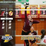 Volleyball Falls in Sectional Final