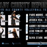 Volleyball Athletes Named All-County