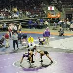 Fernandez wins third state title, two take fourth