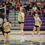 Girls volleyball beats Shadow Ridge 3 – 0 in home opener