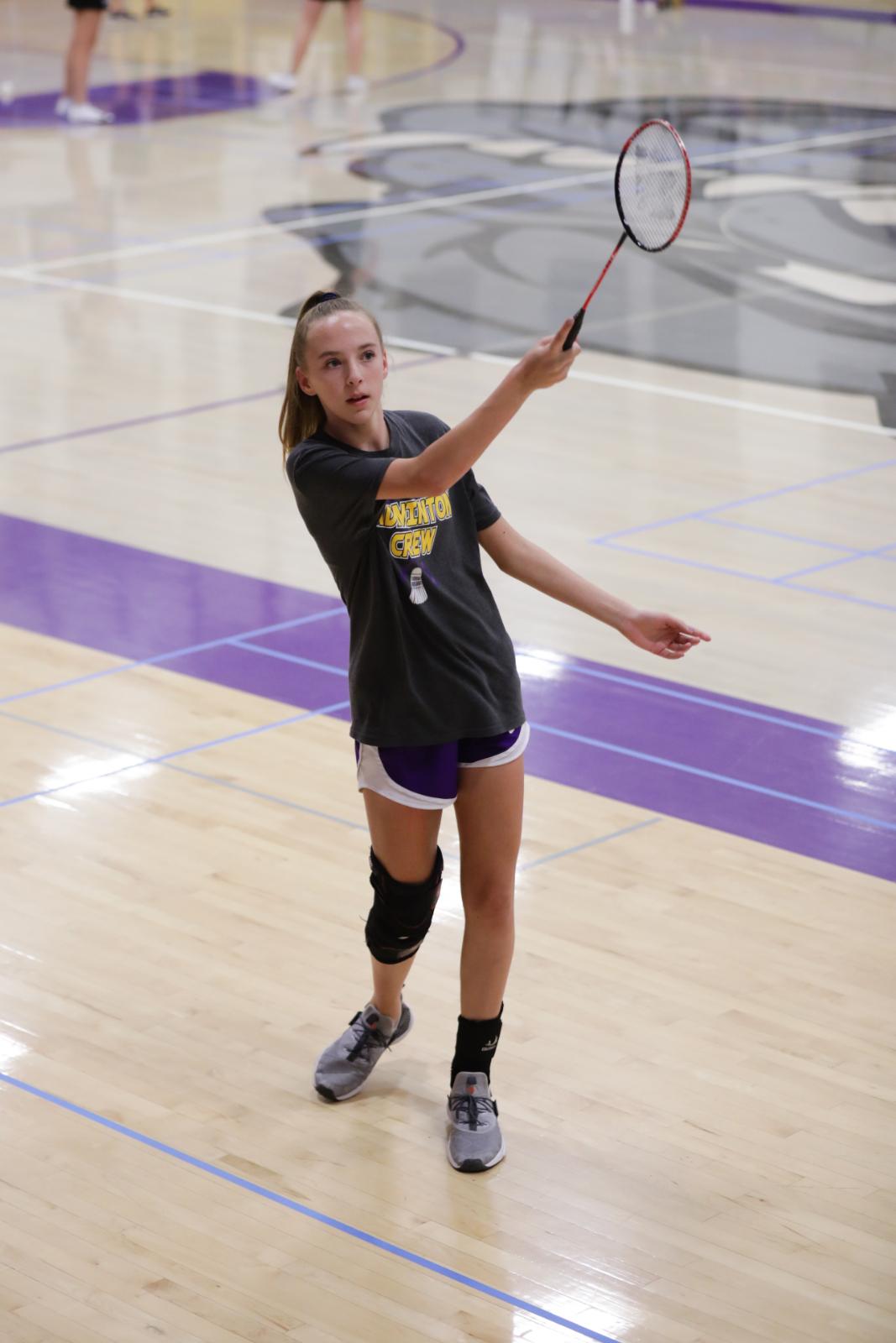 Badminton looks forward to 2020 season