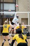Girls Varsity Volleyball beats Harvard 2 – 0