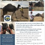 Come Out and support Casteel Wrestling January 4 Petting Zoo Fundraiser