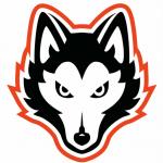 NIC-10 Logos