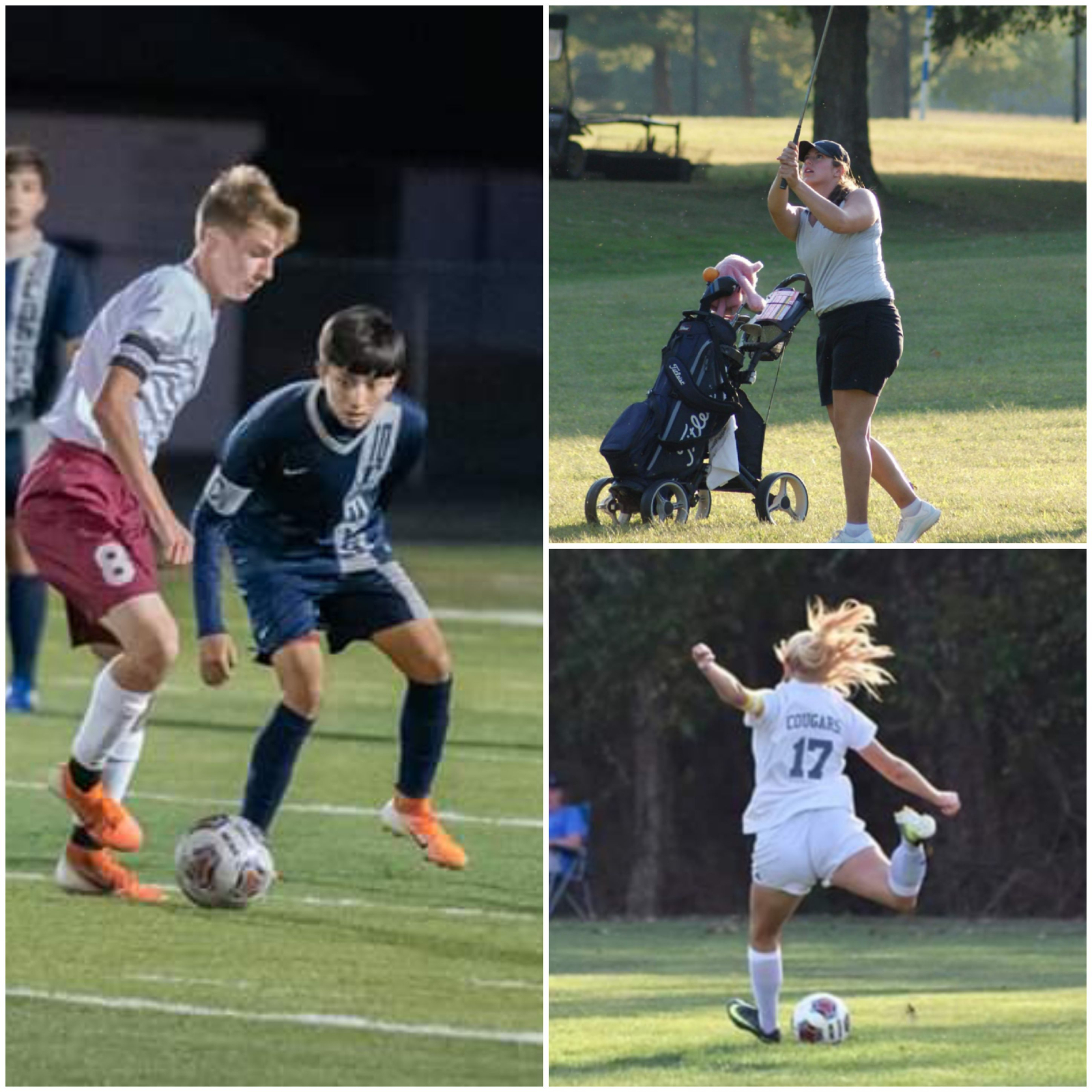 Fall Sports Athletes Earn All Conference Honors