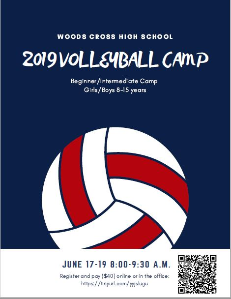 WX Volleyball Skills Camp