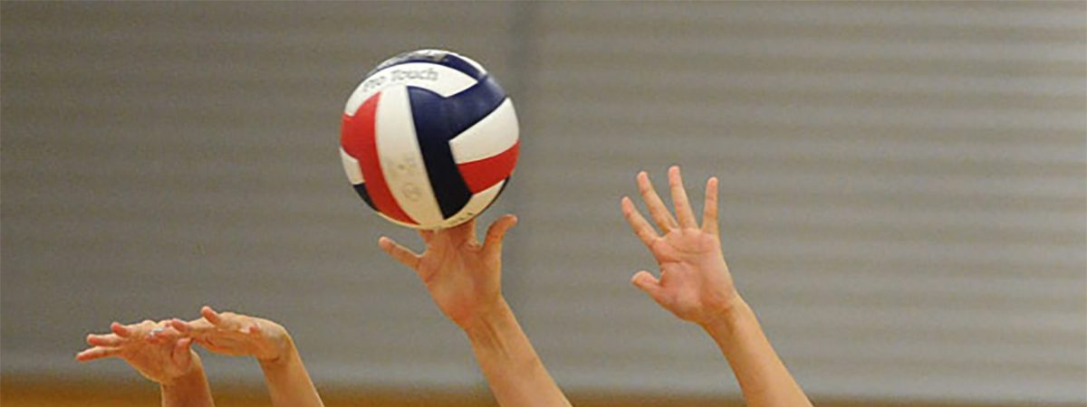 Volleyball: New Coach & Summer Workouts