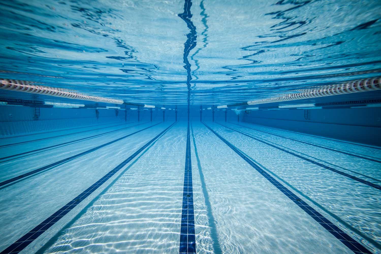 New Swim Coach
