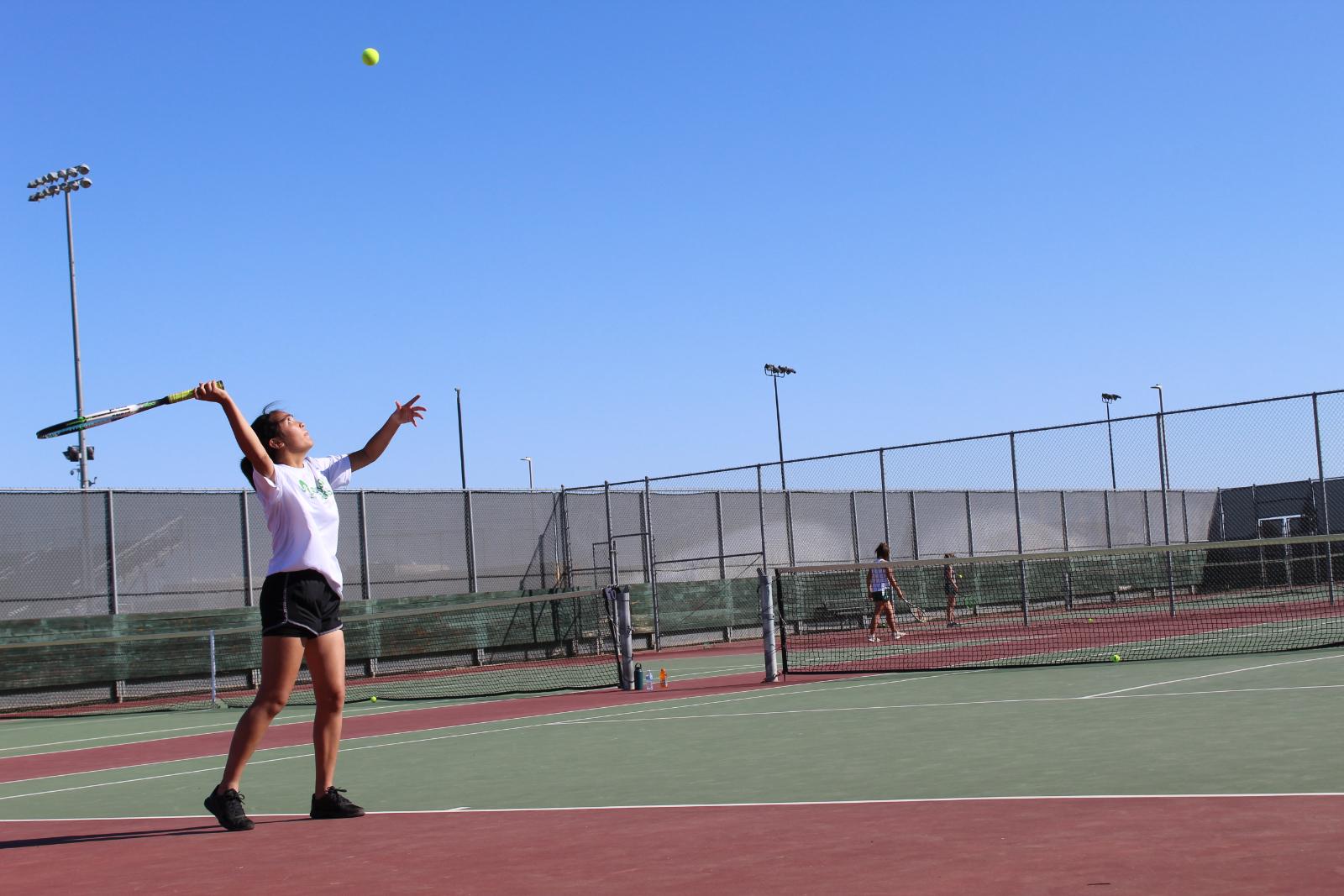 Tennis falls short in 1st round of Playoffs