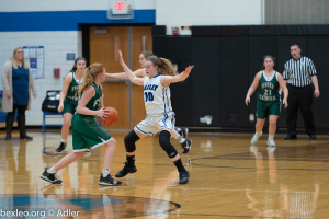 Girls JV Basketball Photo Gallery 18-19