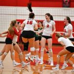 Mentor Names New Head Volleyball Coach