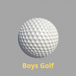 Boys Golf Update – for State Championship