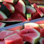 Watermelon Feed