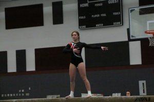 Gymnastics 1-17-19