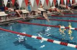 Lady Chieftain Swimmer Win Close 5-Team Meet