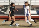 Lady Firebirds stay perfect at home with 8-0 victory over Bears